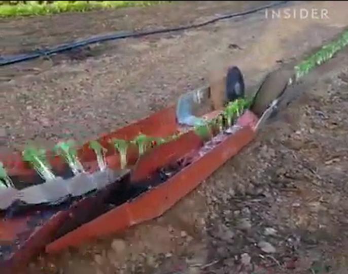 inventos agricolas