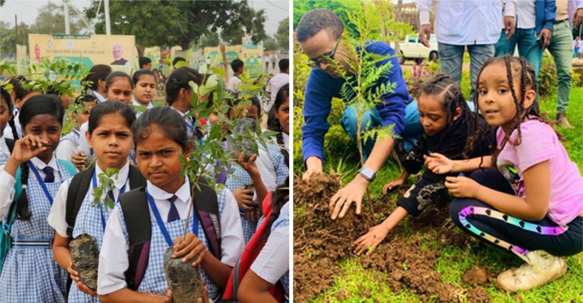 En India sembraron más de 30 millones de árboles en un solo día