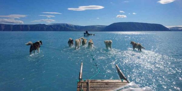 ¡Alerta Groenlandia se derrite a gran velocidad!