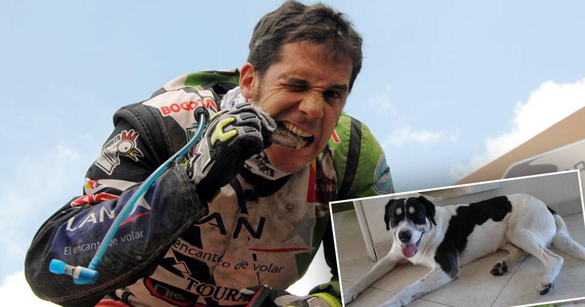 Preso piloto del Dakar por crueldad animal22