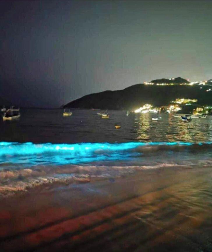 El mar ha comenzado a brillar. Esto es lo que sucede cuando las aguas de Acapulco se encuentran solas.