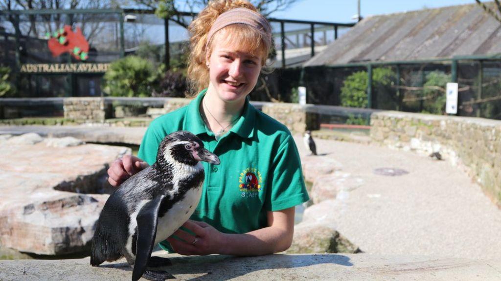 Trabajadoras pasan cuarentena en un zoológico para cuidar a los animales (2)