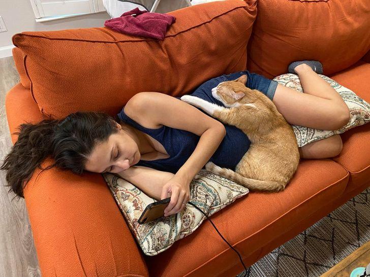 Mascotas dicen te amo