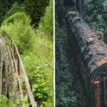 10+ imágenes que demuestran el poder que tiene la naturaleza