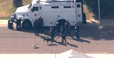 Pug comienza pelea contra un perro policia en pleno operativo